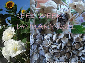 SEED WEEK JANUARY 2011