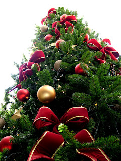 http://4.bp.blogspot.com/_gL2rO6QQV7E/TP7WLbIxRLI/AAAAAAAAAVA/9A-2qMv8rKY/s1600/Natal.jpg