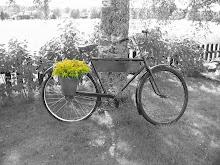 Min trädgårdscykel