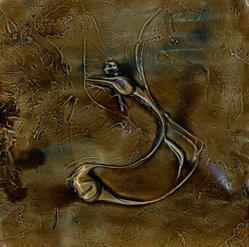 Texturas del pantano