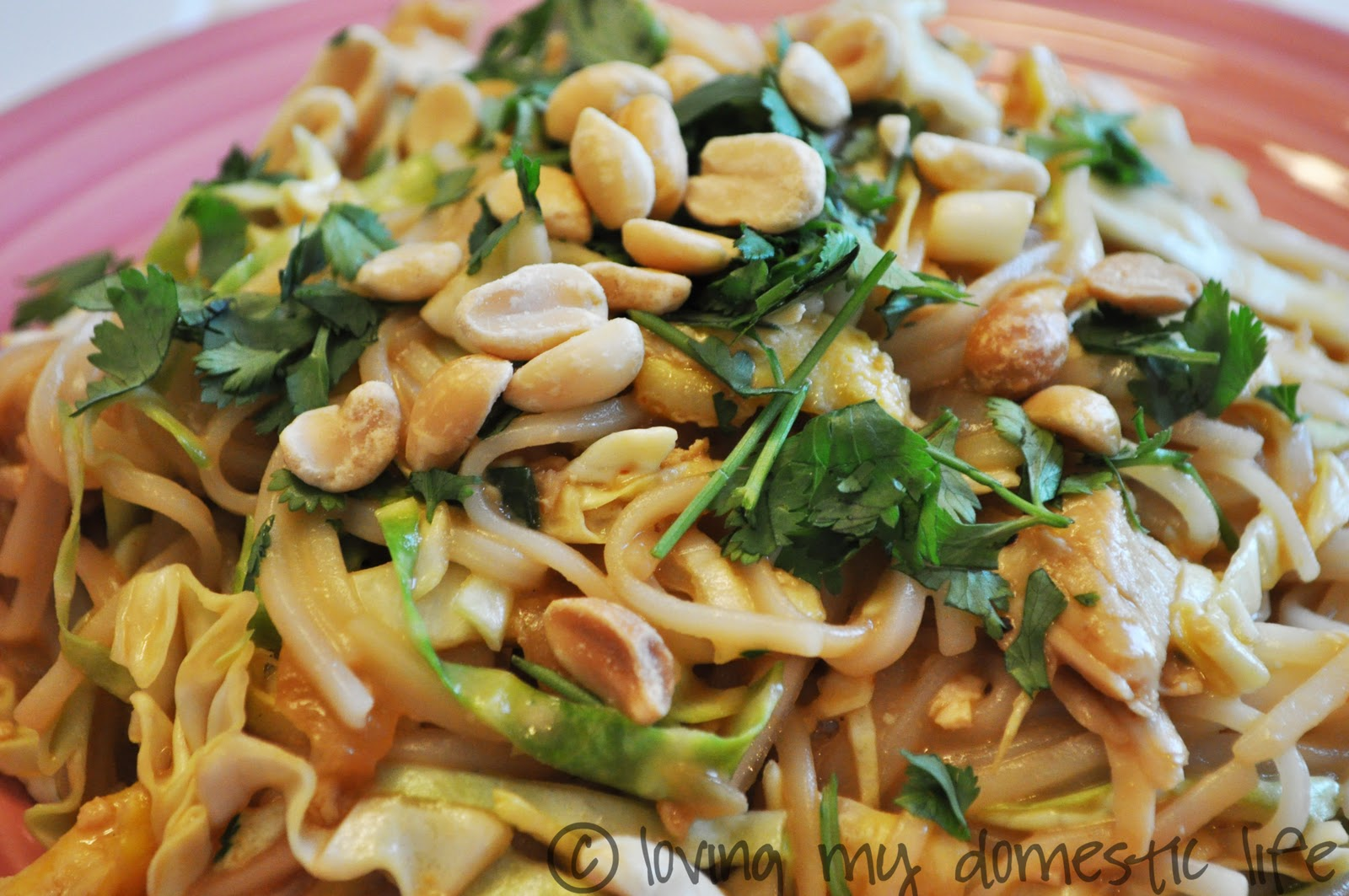 Chicken Pad Thai - adapted from Taste of Home's Shrimp Pad Thai ...