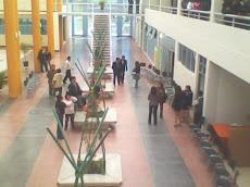 Centro de  Negocios Internacionales  de Huancayo