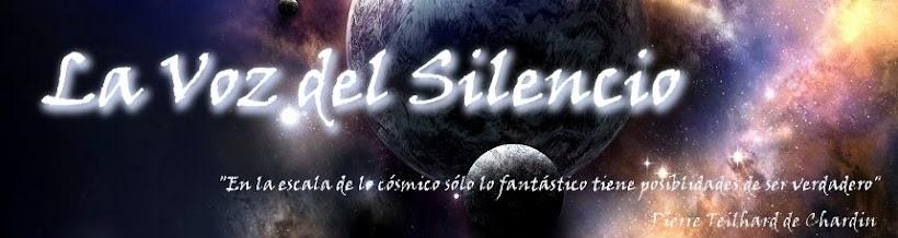 La Voz del Silencio - músico