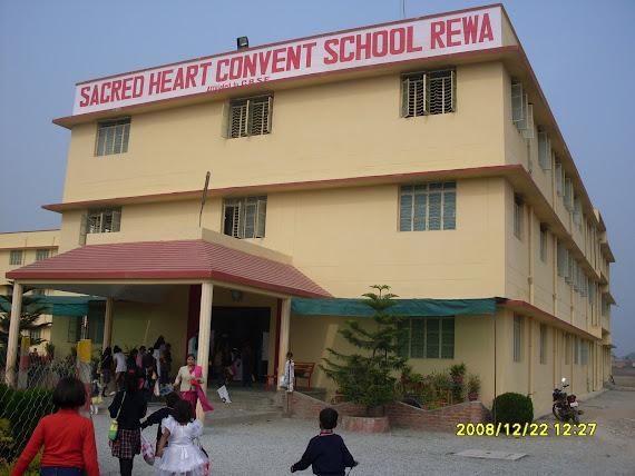 School's Photo