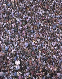 the impact of overpopulation
