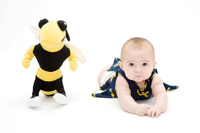 yellow jackets fan