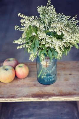 Chamomile and Peppermint Blog - A Collection of Blue Bell Canning Jars