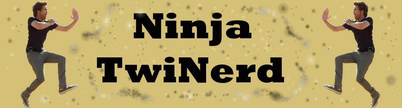 Ninja TwiNerd