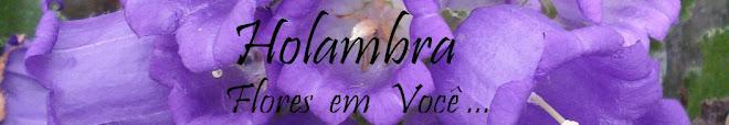 Holambra - Flores em Você