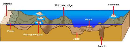 Penampang melintang bentuk muka bumi belajar ips penampang melintang dasar laut ccuart Images