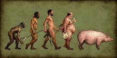 ¿DE QUE MANERA EVOLUCIONAMOS?