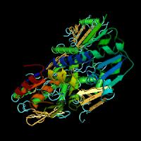PDB Structure  2IHC
