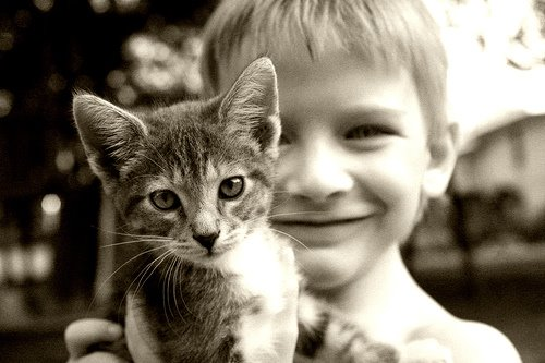 [boy+and+cat.jpg]