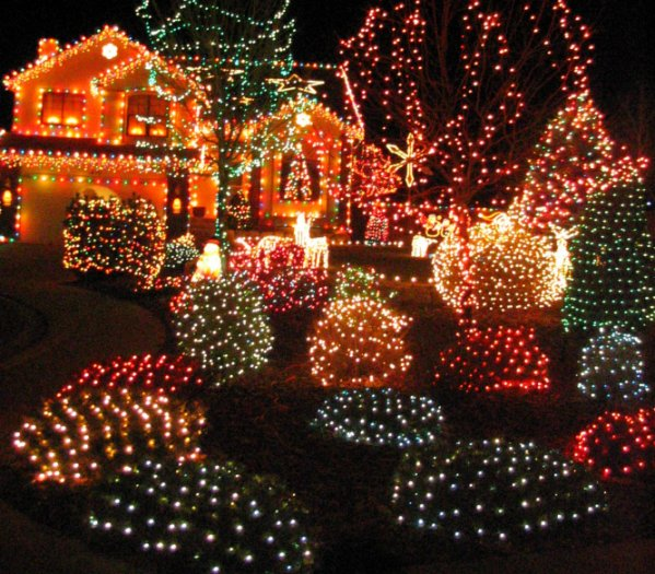 Incredible Outdoor Christmas Lights House 599 x 525 · 105 kB · jpeg