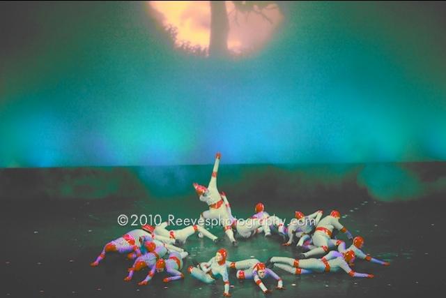 Katee owen dance des photos des photos de fond fond d 233 cran