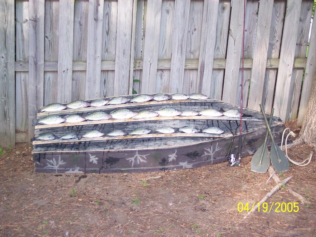 Related to Mississippi Fishing Sardis Lake Fishing Report