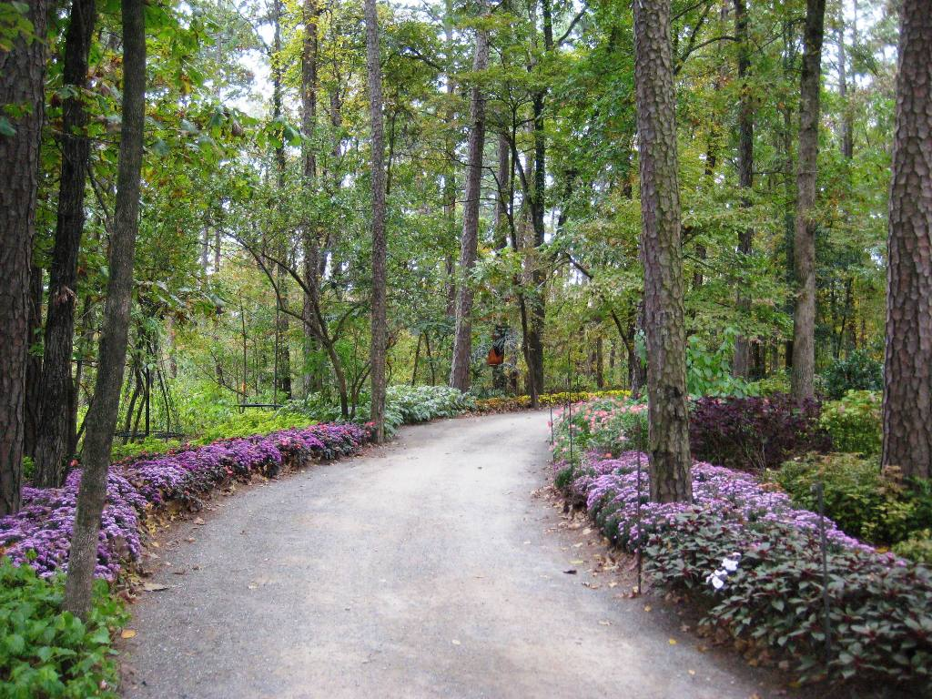 My Pics Vids Bucketlist Kirkjross Garvan Woodland Gardens Garland County Hot Springs Ar