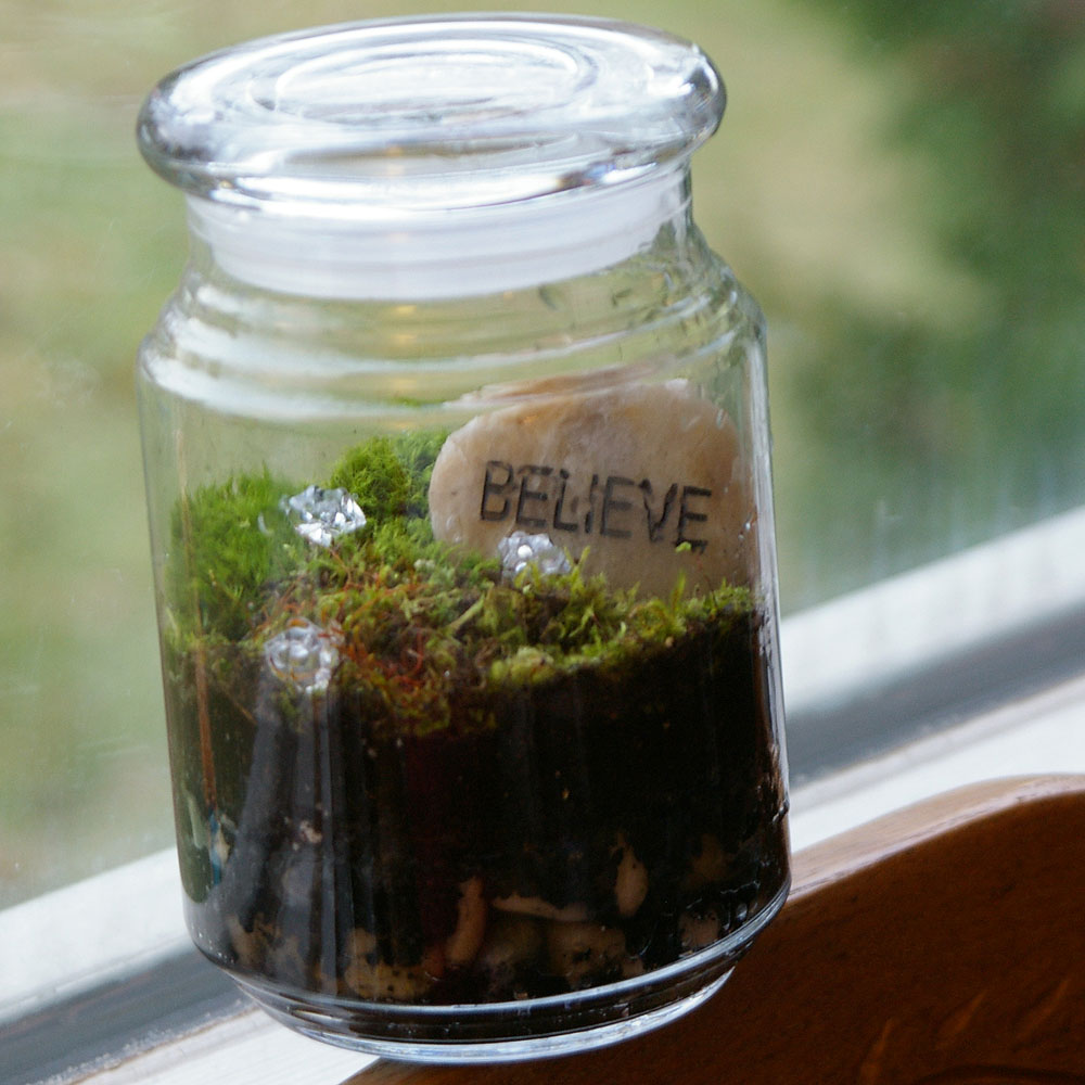 Beneath The Rowan Tree Terrariums A Living Gift How To Make A