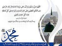 Koleksi al-Habib