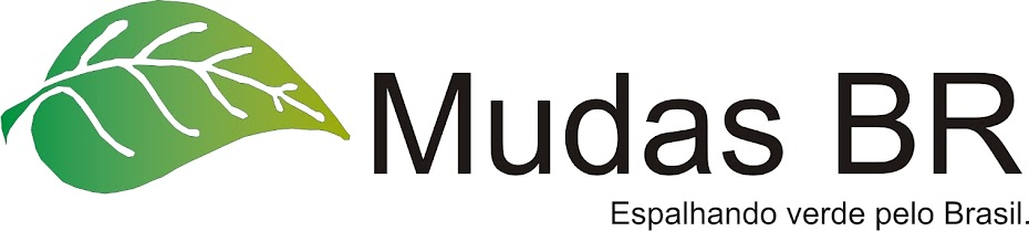 MUDAS BR