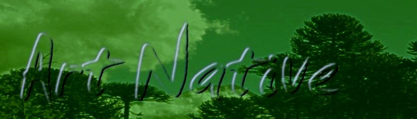 .: Art Native :.