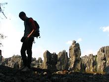 Foresta di pietra di Shilin - Cina