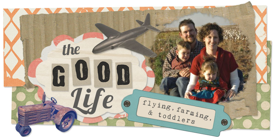 The Good Life: Flying, Farming & Toddlers