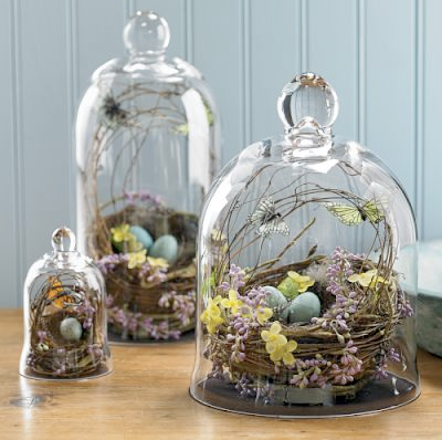 Handblown Nest Bell Jar by Williams Sonoma