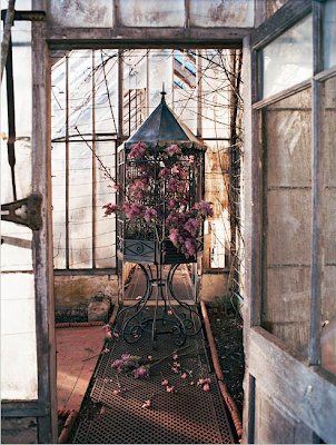 Birdcage by Studio Toogood