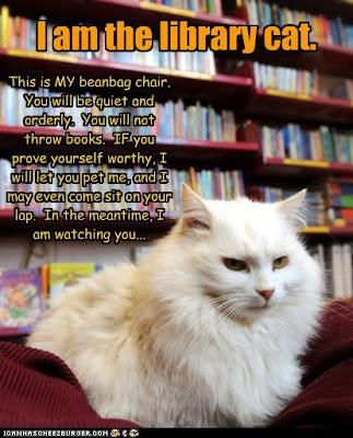Library Cat Meme