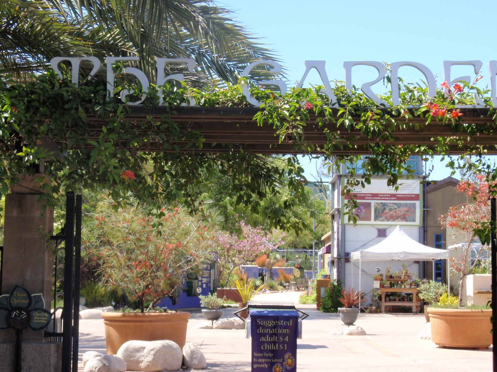 The near food project cuyamaca water conservation garden for Water saving garden designs