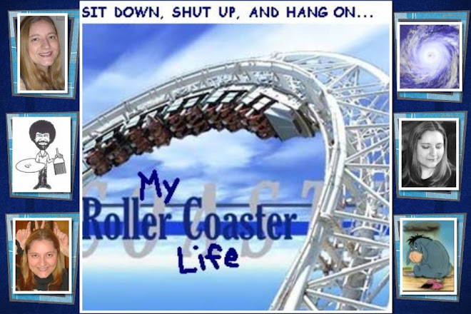 My Roller Coaster Life