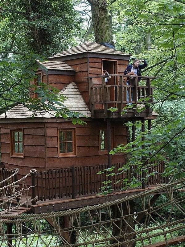 Cool treehouses from around the world cool things for Awesome tree house plans