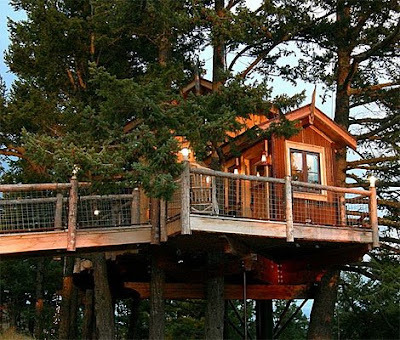 Amazing treehouses around the world for Cool tree house plans