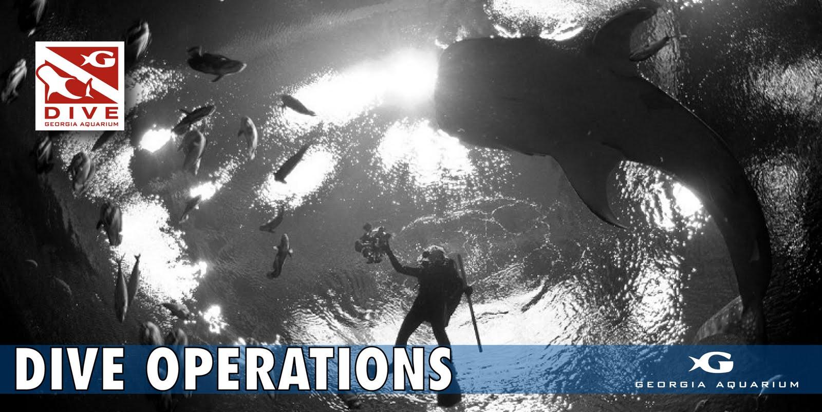 Georgia Aquarium Dive Operations