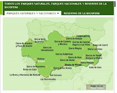 Red de Parques Nacionales y Naturales de Andalucía