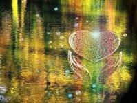 globalna medytacja 9 05 2009, pokój, miłość, 2012