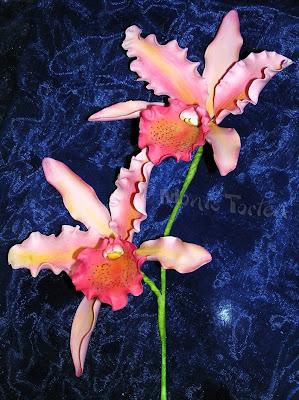 Cattleya aus Zuckerpaste