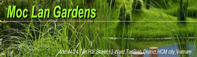 Moclan gardens