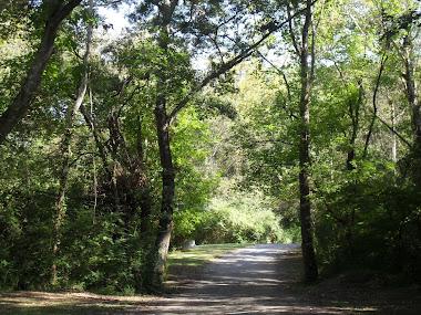 Boling Park