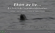 SE FILMEN - KLICKA PÅ BILDEN!