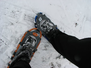 snowshoeing in michigan