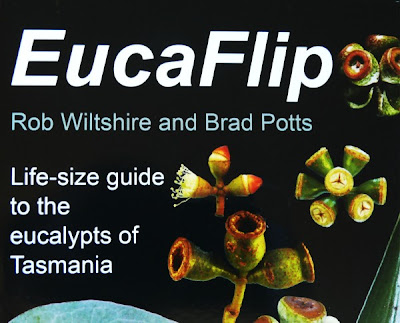 Detail of cover, EucaFlip, Copyright Rob Wiltshire 2007