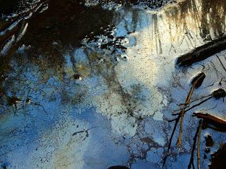Iron oxide scum on puddle, Hartz Mountains - 3 Feb 2007
