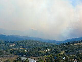 View towards Hartz Mts, obscured by Foresty burns - 9 April 2007