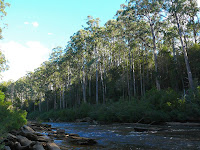 Picton River at old crossing site - 11 April 2007