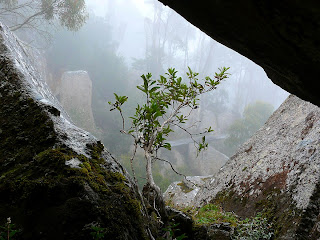 View from within a dolerite overhang at Lost World, Mt Wellington - 17 Nov 2007