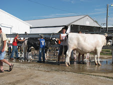 The County Fair Wash Racks.