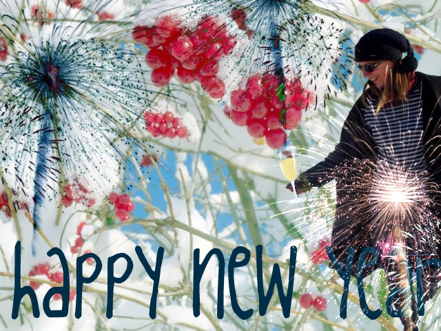 Lustige Bilder Happy New Year - Happy New Year 2012 Bild Bilder