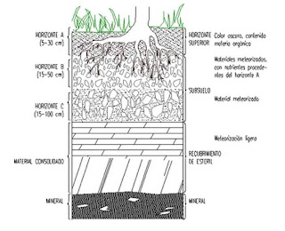 Estratificaion del suelo